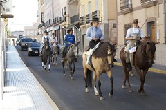 Horses in the streets of Tabernas