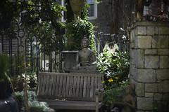 L1022698 (sswee38823) Tags: leica summer garden ma provincetown capecod massachusetts m9 pdp noctiluxm50mmf095asph plymouthdigitalphotographersclub