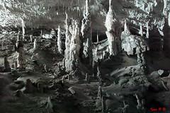 Only white (Sigma SD1, Foveon) (BeSigma) Tags: parco sigma natura slovenia viaggio vacanza grotte merrill foveon cascate postojna sd1