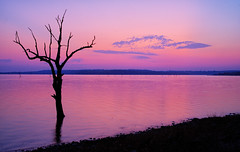 Sad times (Kansas Poetry (Patrick)) Tags: sunset lawrencekansas clintonlake patrickemerson patricknancyforever