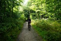 Tina (os♥to) Tags: people woman bike bicycle denmark europa europe sony bicicleta zealand bici tina scandinavia danmark velo fahrrad vélo slt rower cykel a77 sjælland デンマーク osto alpha77 os♥to september2013 fietssykkel