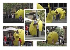 Yellow Snailovation (l plater) Tags: sydney australia martinplace pittstreetmall customshousesquare canon60d lplater crackingartgroup museumofsydneyforecourt canonef70300mmf456lisusm photoshopcs6 snailovation artaboutsydney2013