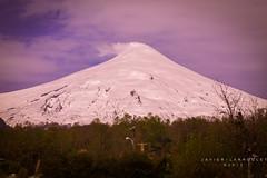 Volcan (javier_larroulet) Tags: naturaleza arboles nieve paisaje nubes fumarola pucon volcan