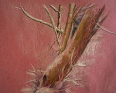Snowy bark on pink ingres paper (amanda.parker377) Tags: winter snow pastel treetrunk pasteldrawing ingrespaper derwentpastels