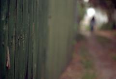 Mystery Girl (leicaflex sl) (PositiveAboutNegatives) Tags: leica film analog alley florida kodak sl summicron 90mm coolscan leicaflex leitz gold200 lakeworth colornegative colorneg vuescan leicar leicaflexsl 90mmsummicron 90mmsummicronr nikon9000scanner girlinbokeh leicafilmphotography freefilmimages freefilmpictures