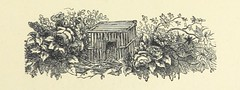 Image taken from page 77 of 'Woodland Romances; or, Fables and Fancies'