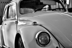 Just like new... (Fe_Lima) Tags: blackandwhite bw classic car brasil volkswagen nikon pb carro pretoebranco fusca constrast barrabonita nikon50mm18g d3100 nikonafsnikkor50mmf18g