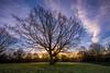 Sunrise at Mote Park (James Waghorn) Tags: winter light england sky tree clouds sunrise star kent nikon solitude quiet sigma ultrawide maidstone lightroom motepark sigma1020 d7100 blinkagain bestofblinkwinners blinksuperstars bestofsuperstars blink4gallery