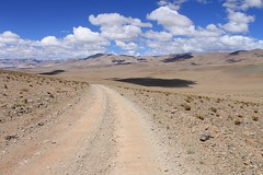 Between Antofagasta and the Salar de Antofalla