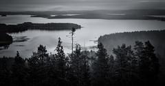 Winter Without Snow II - The Boat (@Tuomo) Tags: finland jyväskylä päijänne landscape clouds rain lake boat forest nik silverefex nikon d600 nikkor 50mm14 oravivuori struve
