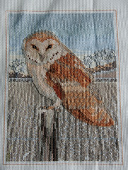 barnowl (SerenielaCrafts) Tags: crossstitch embroidery crafts craft owl owls barnowl tapestry