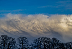 Undulating (intrazome) Tags: trees winter light sky cloud storm nature weather clouds landscape nikon mammatus sigma1770 d5100