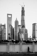not long (matteroffact) Tags: china city urban tower st architecture modern buildings construction nikon asia cityscape skyscrapers shanghai jin andrew future mao tall pudong jinmao futuristic highrises density dense d800 puxi lujiazui swfc megacity shanghaitower supertall shanghaiworldfinancialcenter rochfort andrewrochfort d800e