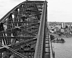 Sydney Looking North