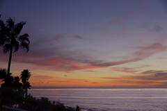 Sunset 09 Feb 14 - La Jolla, CA (Swizzle Stick Photography) Tags: ocean california pink sunset red sky orange sun beach nature water yellow clouds gold golden evening coast twilight nikon san darkness purple pacific dusk sunsets diego palm beaches coastline d800e