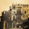 Sam photographer (سامر اللسل) Tags: me rose follow jeddah followme البحرين منصوري عمان تصويري جدة الباحه مصور الطائف فوتوغرافي الجنوب {vision}:{sunset}=0586 {flickrandroidapp}:{filter}=none {vision}:{text}=0577 {vision}:{sky}=0812 {vision}:{outdoor}=0578
