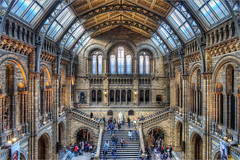 Main Hall (SteveDormer) Tags: london architecturaldetail architectural naturalhistorymuseum hdr
