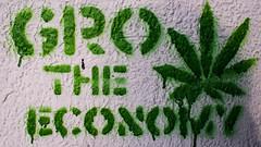Gro The Economy? (Nico Zumstein) Tags: street trip white color green art wall graffiti monkey weed nikon raw safari romania 24mm economy interrail cluj napoca traval d600