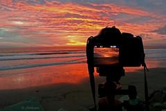 ocean sunset sky orange cloud beach canon view horizon... (Photo: VenturaMermaid on Flickr)