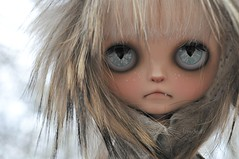 Sometimes She stares (Lawdeda ) Tags: pictures 3 cat wow wednesday was doll erin windy it just and cape blythe custom edition grumpy sooo phew grumpycat the fbl deir ixnay missblythe2012