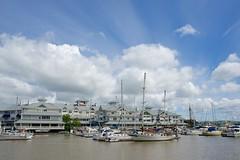 D60_4700 (stephenkirsch) Tags: blue sky cloud white marina hotel nikon cloudy 28mm petaluma f18 sheraton puffy afs d600