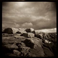 Halland (ickeliv) Tags: sea white black film analog holga sweden sverige halland