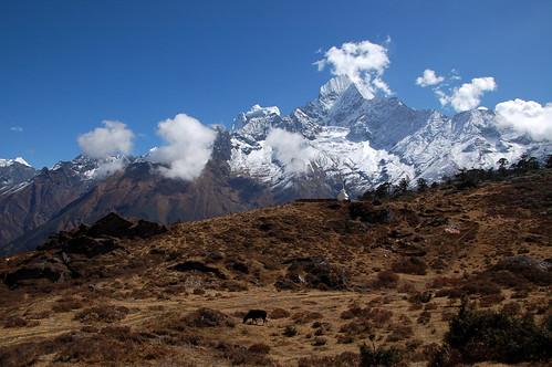 "Everest Base Camp - w drodze do Kumjung <a style=""margin-left:10px; font-size:0.8em;"" href=""http://www.flickr.com/photos/125852101@N02/16355657899/"" target=""_blank"">@flickr</a>"