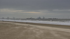 View on seaport (TouTouke - Nightfox) Tags: blue sunset sea sky cloud reflection industry beach water windmill port lights coast energy belgium crane wave landmark cargo knokke transportation zeebrugge