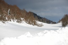 Combe jurassienne (Michel Seguret Thanks for 10,4 M views !!!) Tags: winter mountain france berg montagne nikon hiver jura invierno inverno d800 massif michelseguret