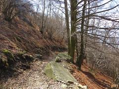 2016-032928 (bubbahop) Tags: switzerland hike locarno 2016 cardada europetrip33
