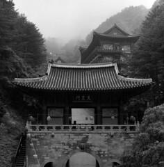 6 (Michael Sameth) Tags: bw mountains 6x6 film monochrome rain fog analog mediumformat landscape temple countryside asia kodak buddhism korea tmx100 guinsa sobaeksan rolleisl66se