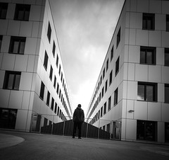 (Svein Nordrum) Tags: windows blackandwhite bw building monochrome lines architecture square angle wide perspective explore squareformat form 12mm tilt askew explored exteriror