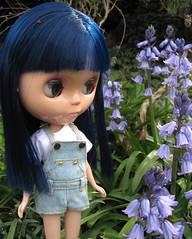 BaD:  1st May 2016 - May Flowers (Calendar girl 48 / grannygreen) Tags: bluebells bonnie mayflowers blythedolls badmay2016