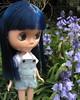 BaD:  1st May 2016 - May Flowers (Calendar girl 48 / grannygreen) Tags: bluebells bonnie mayflowers blythedolls badmay2016