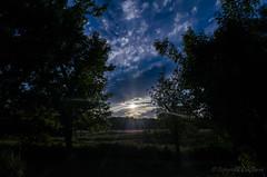 Coucher de soleil_4983 (lucbarre) Tags: cloud sun clouds soleil ciel nuage nuages
