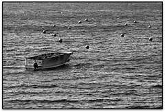 La barca, Calella de Palafrugell (Jess Cano Snchez) Tags: sea bw espaa byn beach canon mar spain mediterranean mediterraneo barca ship catalonia bn catalunya catalua eos20d ampurdan emporda mediterrania espanya mediterrani marenostrum calelladepalafrugell tamron18200 baixemporda bajoampurdan elsenyordelsbertins gironaprovincia portbo