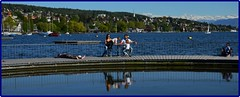 Spring day on Zurich lake (Ioan BACIVAROV Photography+3,900,000visits-Thanks) Tags: lake nature beautiful wonderful switzerland spring interesting suisse zurich natura helvetia printemps photostream primavara wonderfulphoto ioanbacivarov bacivarov