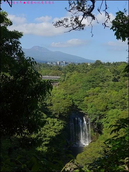 濟州島天帝淵瀑布 (15).JPG
