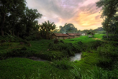 Banyuwangi-Highlands#180AFD (kevinwenning) Tags: road sunset mountains forest indonesia fire java stream village dusk hut jungle ijen wenning kevinwenning intentionallylostcom