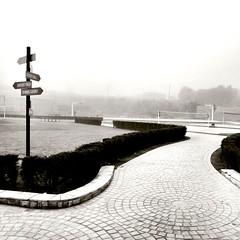 Distorted..... (Farhan Ali RaNa) Tags: white sports weather fog court faded winters