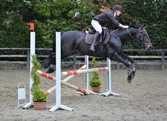 Jumping Meerdaalhof 22052016 (benwillems) Tags: jumping paarden paardrijden paardensport meerdaalhof