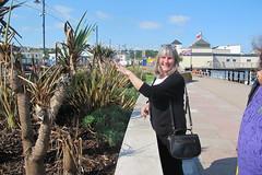 IMG_1968Site4LizLockyear (janohighway) Tags: summer sculpture art design seaside community selection environment choice recycling collective debate teignmouth outdoorart ecoart sculpturetrail devonuk womenartists trail2016