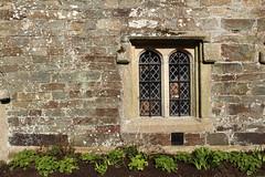 Cotehele Courtyard Window (ir0ny) Tags: window courtyard tudor devon elizabethan nationaltrust cotehele