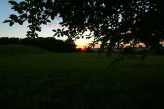 Sunset (Crisp-13) Tags: sunset sun green field grass set angle wide