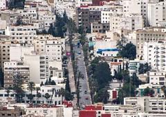 Mauritania (Palm) Avenue (Yassine Abbadi) Tags: road bridge sea sky cloud mountain beach grass plane sunrise buildings spring hill mosque morocco maroc hdr tetuan tetouan martil bouanane