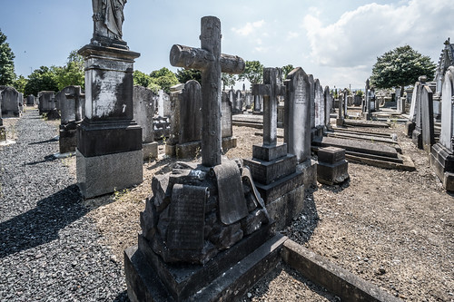 MOUNT JEROME CEMETERY AND CREMATORIUM IN HAROLD'S CROSS [SONY A7RM2 WITH VOIGTLANDER 15mm LENS]-117047