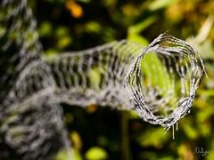 Bras dsarticul (Nadge) Tags: sculpture de fil wires barbed fer bramble rond barbel mtallique