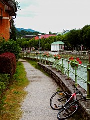 Traun Riverside. (Aaron T Jones) Tags: flower bike river austria town sterreich fuji riverside path cycle finepix s7000 traun oesterreich salzkammergut badischl