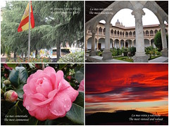 Cinco aos en Flickr. (lumog37) Tags: flores flowers convento sunset puestadesol bandera flags convent claustros cloisters camelias camellias conferas conifers
