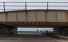 K3__0086.jpg (screwdriver222) Tags: bridge england pentax unitedkingdom devon railings k3 railbridge dawlish sigma1020mmf456exdc colonnadeviaduct